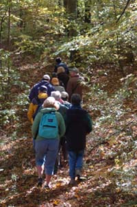 Fall Hike at Springhill Nature Preserve
